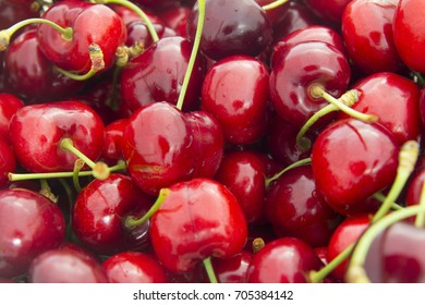 Red and sweet cherries in early summer Australia
