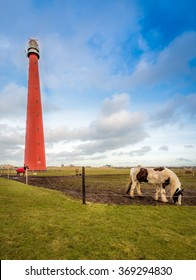 Red and tall lighthouse and some horses in a vertical summer landscape scene. Nice blue sky.