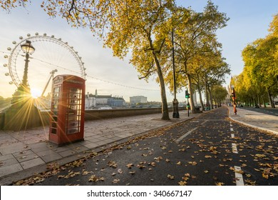 Red Telephone Box and autumn leaves at sunrise. Fall in London, England