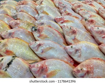 Red Tilapia,Ruby fish in supermaket, Fresh fish in the stall on ice