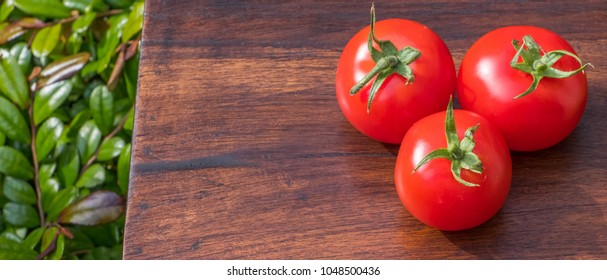 Red tomato fruit on wooden table in outdoor garden