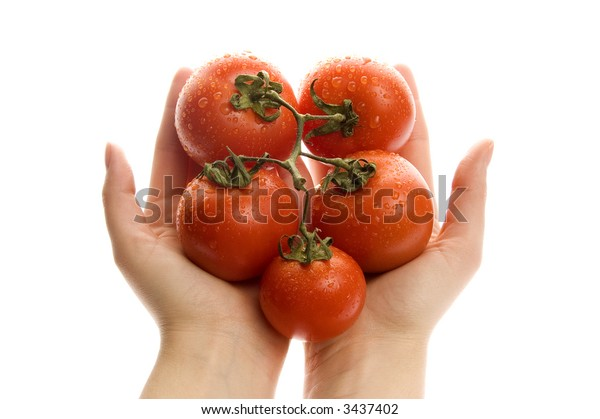 Red tomato in hands