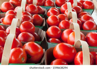 red tomatoes at the market in baskets organic agriculture