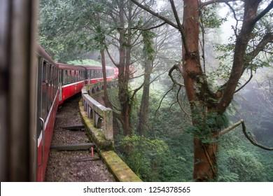 Red Train in Forest Railway Alishan Taiwan