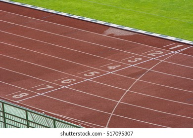 Red treadmill, track running at the stadium with green grass