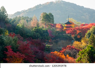 Red triple tower with red maple leaf at Kiyomizu-dera Temple in Kyoto 11/28/2014 Kyoto,japan