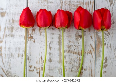 Red tulip blooms on wooden background