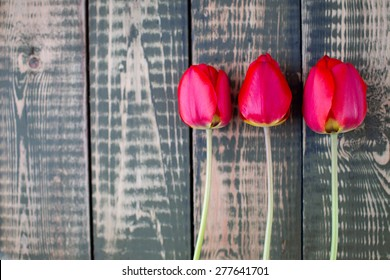 Red tulip blooms on wooden background with space for text