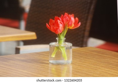 red tulip bouquet standing on the table of a sidewalk café in sunlight