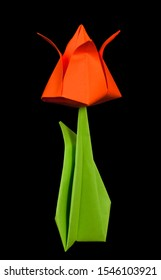 Red tulip isolated on black background. Origami tulip. Paper made flower.