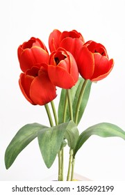 Red tulip with leave on a white background