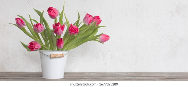 red tulips in bucket on background  old  white wall