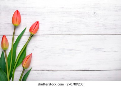 Red tulips flowers on white wooden table. Top view with copy space