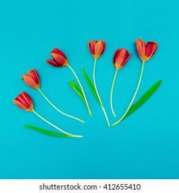 Red Tulips on blue background. Minimalism art.