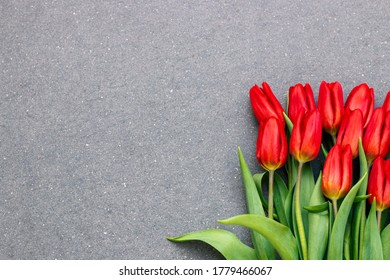 Red tulips on grey stone with free space for text.