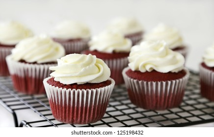 Red velvet cupcakes with cream cheese frosting on a rack