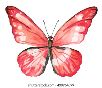 Red watercolor butterfly at white background
