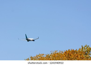 Red, White and Blue airplane taking off over autumn trees, copy space