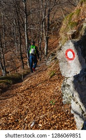 Red and white circular trail marking on grey rock with male hiker visible in background in autumn. Hiking, orientation and nature concepts.