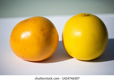 red and white Grapefruit, white Background