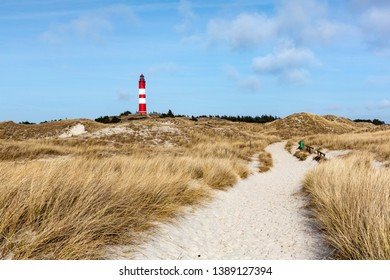Red and white lighthouse on the hill viewed from low angle with dry grass and white sand dunes trail in foreground on a sunny day in Amrum, Germany, Schleswig-Holstein