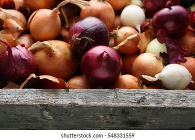 Red and white onions in wood crate, food closeup