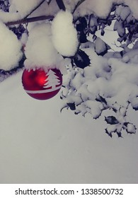 red and white ornament hanging from holly tree with snow