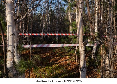 Red and white striped warning about danger and limited access tape tape. Red and white striped stretched warning barricade tape against the background of the forest