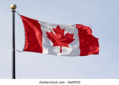red and white waving Flag of Canada - Maple Leaf Flag