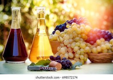 Red and white wine - autumn healthy food and drink (beverage), autumn harvest - thanksgiving