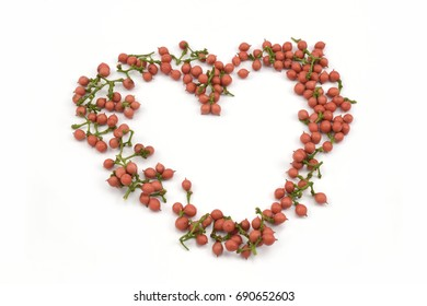 Red wild fruit ( Flagellaria indica ) on  white background.