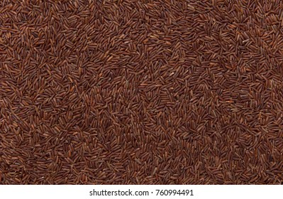 red wild rice as background, close up of grains, background use.