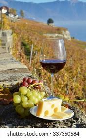 Red wine against vineyards in Lavaux, Switzerland