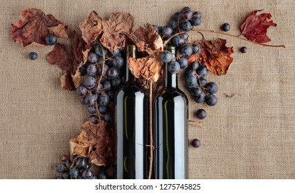 Red wine bottles and fresh grapes with dried up vine leaves on burlap ,top view, copy space for your text.