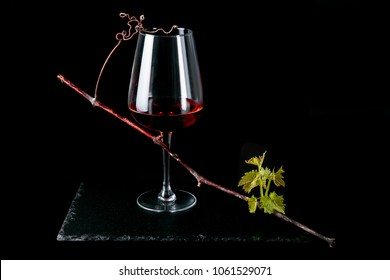 Red wine in glasses with new grape sprout