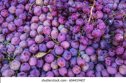 Red wine grapes background, wine grapes, dark grapes, blue grapes