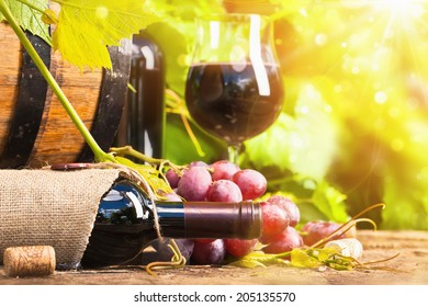 Red wine and grapes in bright sunlight