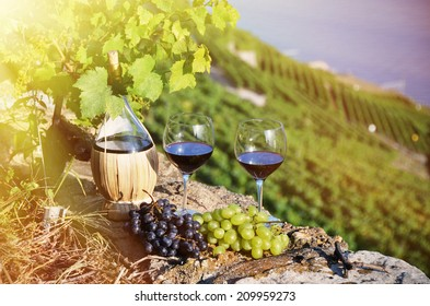 Red wine and grapes. Lavaux region, Switzerland