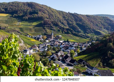 Red wine hiking in the Ahr valley, Germany