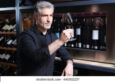 Red wine, man evaluates the color of wine in a glass. Sommelier tasting red wine