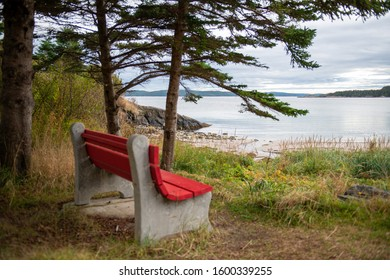 A red wood bench with concrete frame sits under a couple of tall trees overlooking the ocean with a cloudy sky. There's a mountain off in distance past the calm ocean. Grass surrounds the bench.