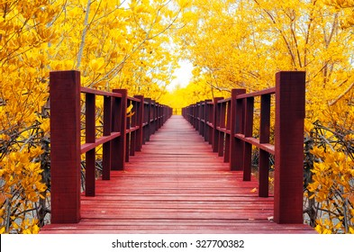 Red wooden bridge into the autumn forest.