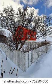Red wooden cottage over concrete basement placed beside the E10 European road-wooden fence surrounding snow covered orchard with naked downy birch tree-tall flagpost. Vareid-Flakstadoya-Lofoten-Norway