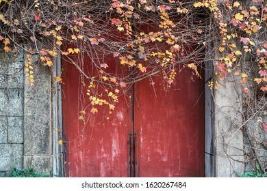 red wooden door or gate,ancient Chinese architecture: garden