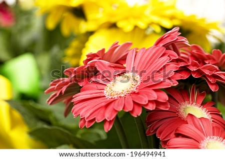 Red yellow flower arrangements green leaves stock photo edit now red and yellow flower arrangements with green leaves mightylinksfo