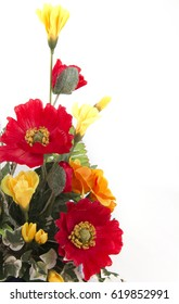 red and yellow flowers on white backgound