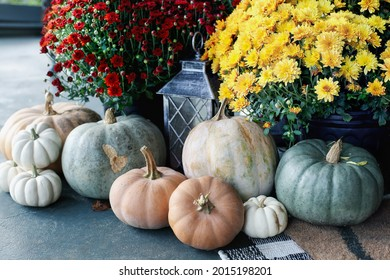 Red and yellow orange mums on a front porch that has been decorated for autumn with heirloom white, orange and grey pumpkins.