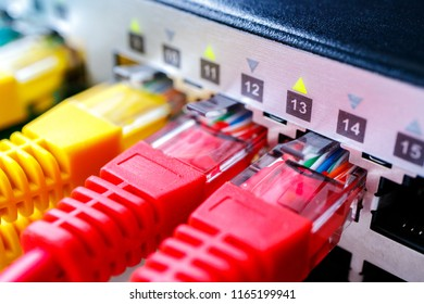 red and yellow patch cords in the switch, many working ports of the custom switch for Internet service provider
