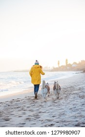 red-haired girl in a yellow rain coat and two husky dogs walking along the coast