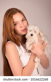 Redhead girl in white dress hugging a dog Maltese at the hands on an isolated grey background